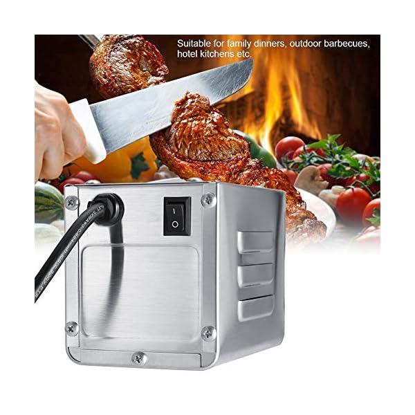 Zerodis Motore per Barbecue 50-70KGF Kit Girarrosto All'aperto Acciaio Inossidabile BBQ Rosticceria Motore Girarrosto… 2 spesavip