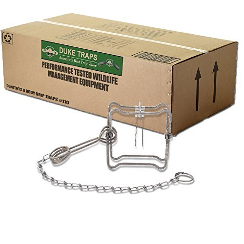 Duke #110BT Single Spring Body Grip Trap - 4.5' Jaws - for Mink, Muskrat and Weasel 0400 (6 Traps)