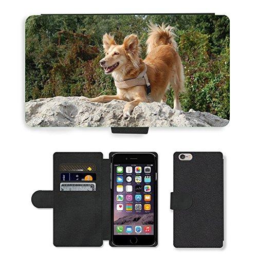 "Just Phone Cases PU Leather Flip Custodia Protettiva Case Cover per // M00128295 Chien Sable joie de vivre Looking // Apple iPhone 6 PLUS 5.5"""