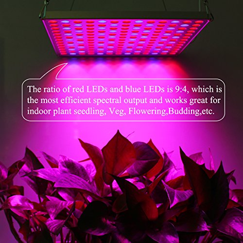 51PvaHTmjvL - LED Grow Light Panel 45W, Reflector LED Plant Growing Light with Red Blue Bulbs Spectrum for Indoor Plants Veg Seedling Growing and Flowering by Lightimetunnel