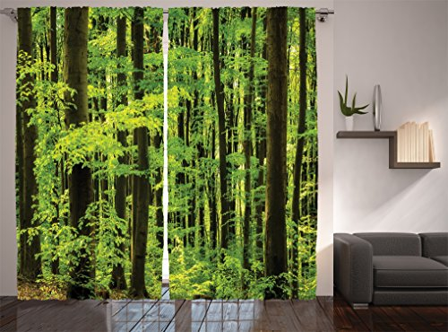 Spring Foliage - Ambesonne Farm House Decor Collection, Spring Foliage Beech Forest Morning View in the Mountains, Window Treatments, Living Boys Girls Room Curtain 2 Panels Set, 108 X 90 Inches, Lime Green Olive