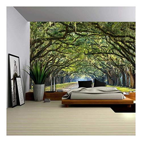 Tree Covered Pathway Through Forest Wall Mural