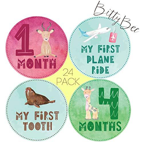 Baby Monthly Milestone Stickers – 24 Onesie Belly Stickers for First Year Boys/Girls. Newborn - 12 Months +12 Holiday and Achievement Stickers. Best Shower Registry Gift or Scrapbook Photo Keepsake.