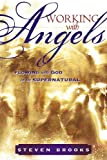 Working with Angels, Steven W. Brooks, 0768425115