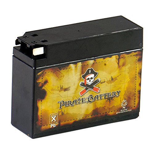 ance - Maintenance Free - Sealed AGM Motorcycle Battery ()