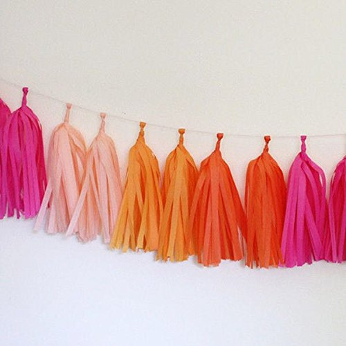 Jesipi Princess Pink Cerise Orange Nursery Room Decoration Tissue Paper Tassels Garlands Hanging Banners Pack of 8