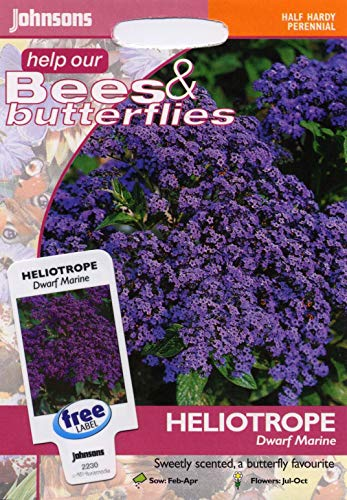 johnsons Seeds - pictorial Pack - Flower - Heliotrope Dwarf Marine - 150 Seeds