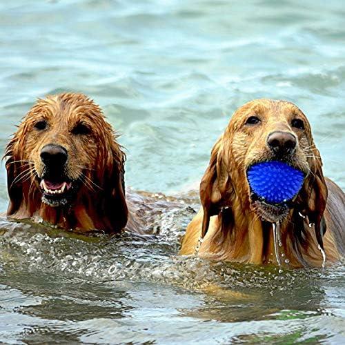Diafrican - Pelotas de Juguete para Perros - Juguete Robusto ...