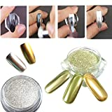 Born Pretty 2 Box Mirror Powder Gold Silver Pigment Nail Glitter Nail Art Chrome Powder with Matching Brushes Silver and Gold