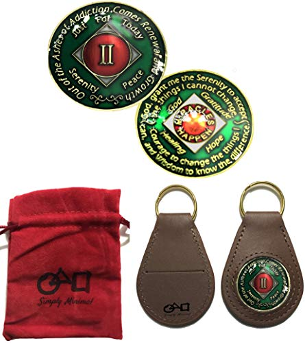 (3 Pack-NA Coin, Gold Plated Tri-Plated 2 Year NA Recovery Coin, Coin Holder, and a Velvet Pouch )