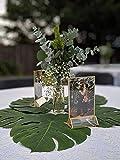 NIUBEE 6Pack 5 x 7 Clear Acrylic Wedding Table