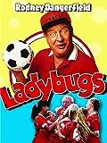 DVD : Ladybugs