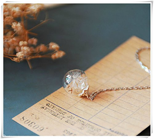 hand blown orb 925 pure Silver chain Sterling necklace with Real Dandelion Seeds -Mother's Day gift