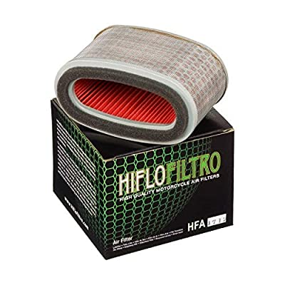 Hiflofiltro HFA1712 Premium OE Replacement Air Filter: Automotive