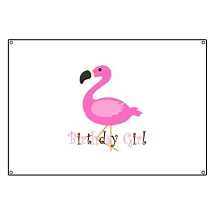 645cacc5f Amazon.com: CafePress Birthday Girl Flamingo Vinyl Banner, 44