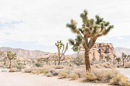 Joshua Tree Boho Minimalist MidCentury Modern Succulent Southwestern Large Wall Art Print Decor