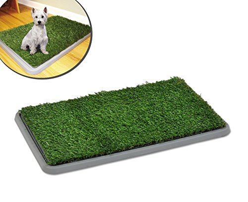 Inodoro bandeja de césped artificial educación perros POTTY PATCH 68x43x5cm: Amazon.es: Deportes y aire libre