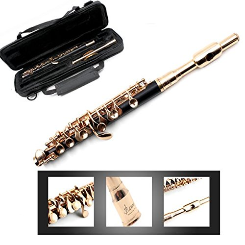 LADE ABS Pipe Golden C Tone Piccolo with Cloth Case