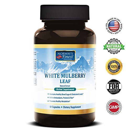 Norway's Finest White Mulberry Leaf | Natural Extract | 500mg per Serving | 60 Capsules