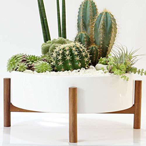Mid Century Large Round Succulent Planter Bowl 10 Inch White Ceramic