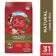 Purina ONE Natural Dry Dog Food; SmartBlend Lamb & Rice Formula - 31.1 lb. Bag