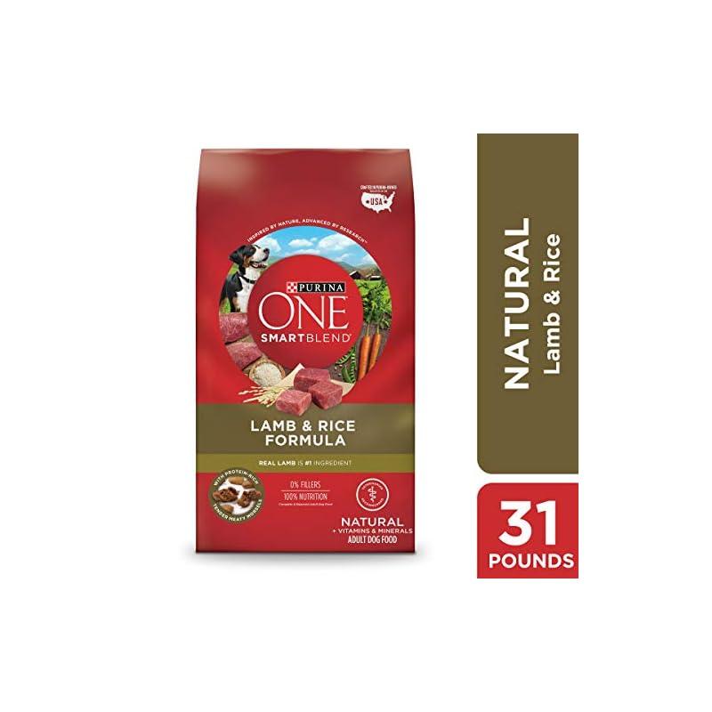dog supplies online purina one natural dry dog food, smartblend lamb & rice formula - 31.1 lb. bag