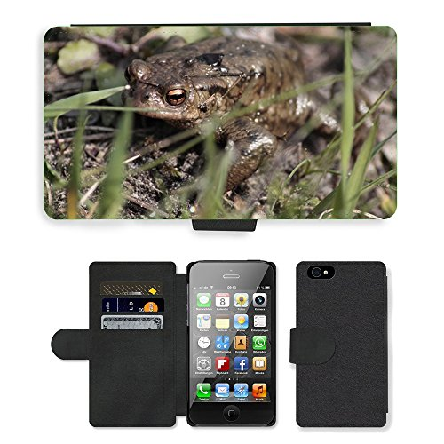 Just Phone Cases PU Leather Flip Custodia Protettiva Case Cover per // M00128660 Toad animaux Amphibiens Nature Pierres // Apple iPhone 4 4S 4G
