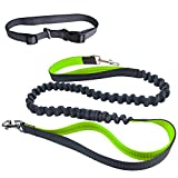 "Ecandy Hands Free Dog Leash Double Handle Running Leash Durable Shockproof Extensible Bungee (Stretches to 75"")+ Adjustable Waist Belt for Jogging, Running, Walking, Hiking (Green)"
