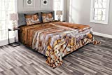 Lunarable Shutters Bedspread Set King Size, Old Window at A Farm with Pile of Firewood Holiday Villa Rural Tranquil Scene, Decorative Quilted 3 Piece Coverlet Set with 2 Pillow Shams, Brown Beige