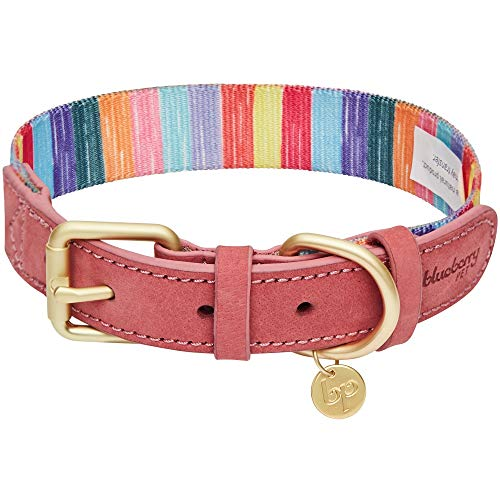 Blueberry Pet 2019 New Shades of Rainbow Multicolor Crayon Stripes Polyester Fabric Webbing and Soft Genuine Leather Dog Collar, Small, Neck 12
