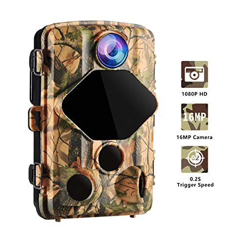 Trail Hunting Game Wansview Camera