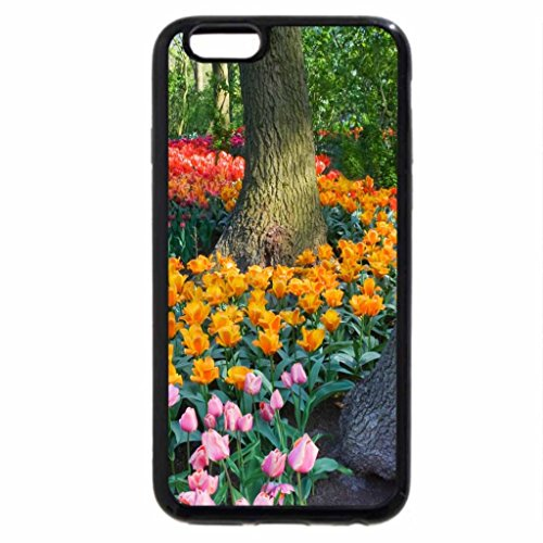 iPhone 6S / iPhone 6 Case (Black) Spring