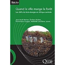 Quand la ville mange la forêt: Les défis du bois-énergie en Afrique centrale (Matière à débattre et décider)