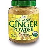 Jiva Organics Organic Ginger Root Powder, 1 LB Bulk - Non-GMO - for Cooking, Baking, Tea & More