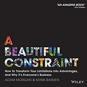 A Beautiful Constraint Audiobook
