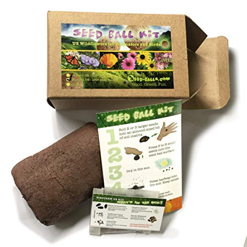 (US Native Wildflower Seed Ball Kit. Makes 100 Wildflower Seed Bombs for pollinators. (Eastern US))
