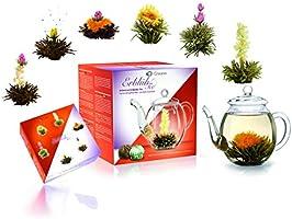Creano Teeblumen Mix - Geschenkset ErblühTee mit Glaskanne 500ml Weißtee & Schwarztee mit 6 Teekugeln je 3x weißer &...