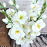 Smileshop01-Realistic-1Pc-Artificial-Simulation-Gladiolus-Flower-Stem-Wedding-BouquetPosy-Table-Home-Decor-8-ColorsYellow