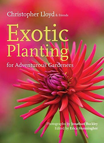 Cheap  Exotic Planting for Adventurous Gardeners