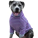 Tooth & Honey Big Dog/Stripe Shirt/Pullover/Full Belly Coverage/for Big Dogs/Pitbull Shirt/Purple and Grey (Large)