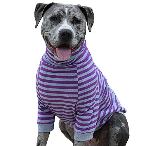 Tooth & Honey Big Dog/Stripe Shirt/Pullover/Full Belly Coverage/for Big Dogs/Pitbull Shirt/Purple and Grey - T-shirt Dog Awesome