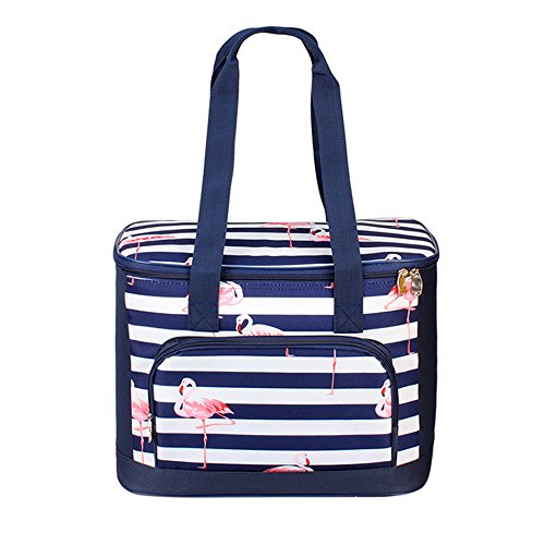 - Large Capacity Insulated Picnic Cooler Tote Bag for Women Girls Travel Beach Picnic Stylish 19L