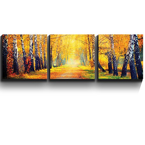 3 Square Panels Contemporary Art Sunny Autumn day trees line a path Three Gallery ped Printed Piece x3 Panels