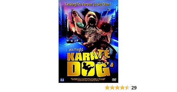 Karaté Dog [Francia] [DVD]: Amazon.es: Jon Voight, Simon Rex ...