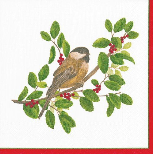 Cocktail Napkins Holiday Party Christmas Napkins Entertaining Paper Napkins Winter Song Birds Pk 40