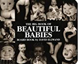 The Big Book of Beautiful Babies, David Ellwand, 0525465464