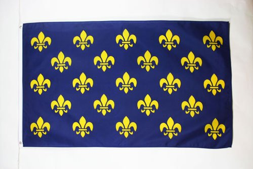 FRANCE BLUE AND GOLD FLEUR-DE-LIS FLAG 3' x 5' - FRENCH ROYA