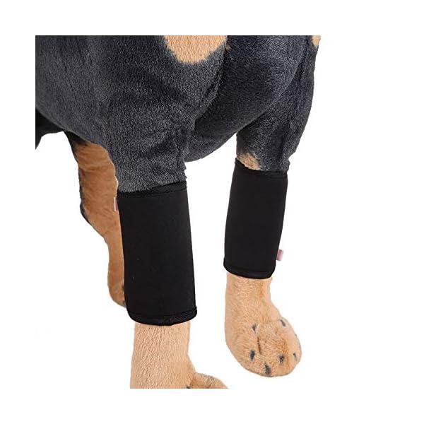 Canine-Leg-Brace