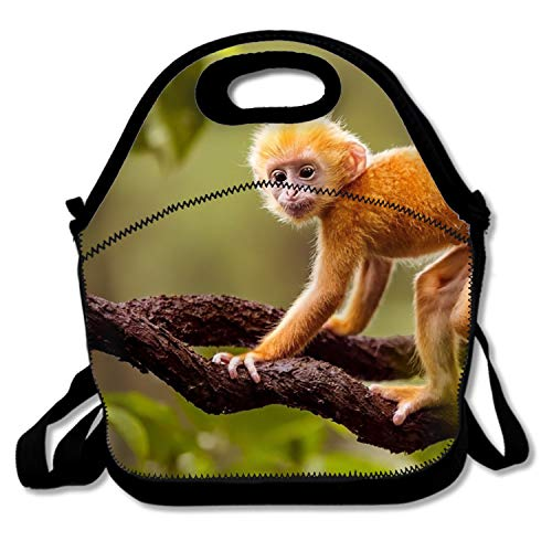 ox Cute Lunch Bag Lunch Bag for WomenGolden Snub Nosed Monkey ()