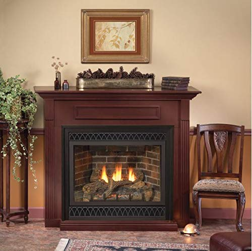 Empire Comfort Systems Deluxe 36 Tahoe DV IP Fireplace with Barrier Screen, LP ()